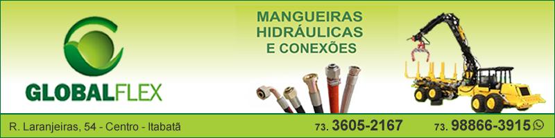Globalflex Mangueiras Hidráulicas e Conexões