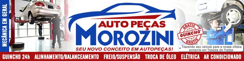 Auto Peças Morozini